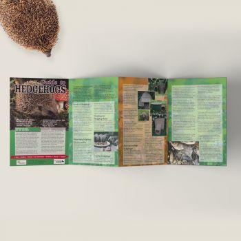 Hedgehog Guide